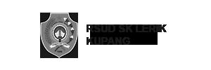 logo-LERIK-300x100-bw